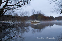 Winter morning (Anna Calvert Photography) Tags: canberra lotusbay australia water trees reflections landscape outdoors fog winter yacht boat nature