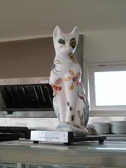 Berry Head Cat Guardhouse Cafe (Bridgemarker Tim) Tags: cats felines brixham guardhouse berryhead pussies