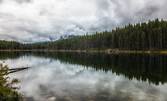 Jasper National park/ Icefield Parkway (wandering indian) Tags: canada landscape banff jaspernationalpark icefieldparkway kedardatta nikon rain clouds fog mist reflection longexposure