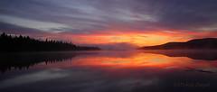 Lever du soleil sur le lac / Sunrise on the lake (mitch099) Tags: paysage landscape nature beauty beaut quebec mitch099 micheleamyot lever soleil sunrise matane gaspesie lake lac