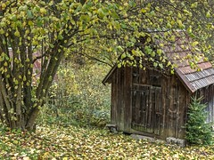 Hay Sheds of Murg Valley 03 (MJWoerner49) Tags: blackforest hut murgtal murg murgvalley northernblackforest gernsbach reichental forbach gausbach barn shed hay haybarn hayshed autumn