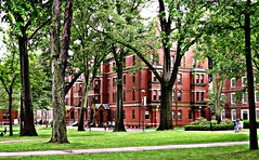 Harvard Spring NG (JayVeeAre (JvR)) Tags: ©2016johannesvanrooy 2016 boston johannesvanrooy johnvanrooy gimp28 picasa3 httpwwwpanoramiocomuser1363680 httpwwwflickrcomphotosjayveeare johnvanrooygmailcom canonpowershotg10