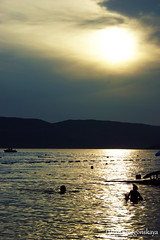 (tatianatorgonskaya) Tags:                       bokakotorska bokabay adriatic adriaticsea sea coast montenegro crnagora balkans balkanstravel nature summer august season  landscape sunset sun   south mediterranean