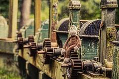 Hehey @ Sion Mills (Mr Clicker / Davin) Tags: mr clicker davin strabane ireland sion mills sluice gate cogs