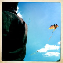 (Sessions500) Tags: kite festival fun washingtondc districtofcolumbia kites nationalmall blossomkitefestival