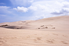 Sand #2 (daniel.chodusov) Tags: newzealand sand desert dune northisland northland farnorth