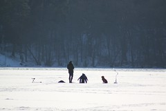 (frettir) Tags: winter dog ice barn is vinter fishing dad child sweden stockholm pimpling hund pappa fiske bromma ngbybadet ngby
