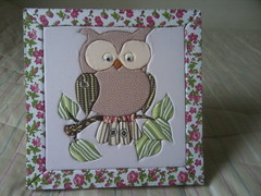 P12-01-13_12.39 (Vaness@_@) Tags: mdf caixinha corujinha patchworkembutido