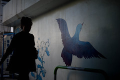 (noji-ichi) Tags: leica bird japan wall illustration 50mm graffiti tokyo ikebukuro   m9  summar leitz