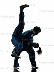 karate vietvodao martial arts man woman couple silhouette (Franck Camhi) Tags: shadow 2 two people woman white man male sports girl silhouette female cutout pose asian person one 1 vietnamese exercise fulllength young couples martialarts falling indoors karate whitebackground kungfu uniforms studioshot posture fighting adults twopeople isolated position caucasian fightingstance exercising vietvodao combativesport