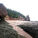 "0018-maritimes-hopewell-rocks.jpg • <a style=""font-size:0.8em;"" href=""http://www.flickr.com/photos/18570447@N02/8661786154/"" target=""_blank"">View on Flickr</a>"