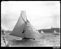 Yacht EFFIE on Sydney Harbour (Australian National Maritime Museum on The Commons) Tags: sailing yacht sydney sail sydneyharbour effie yachting williamhall williamhallcollection