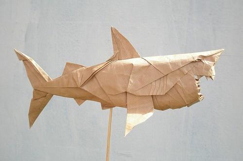 Great White Shark By Nguyen Hung Cuong Folded Artur Biernacki