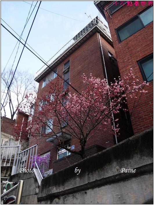 0407北村八景(040).JPG
