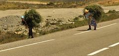 photographies (marie de cara) Tags: travel portrait landscape maroc chefchaouen oujda mariepierredecara copyrigthmariepierredecara maroccôteméditerranéenneoujdaalhoceimachefchaouen oujdaalhoceimachefchaouen wwwmariedecaraweoneacom