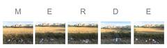 merde (brucexxit) Tags: degrado incivili viterbo tuscia