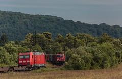 2091_2016_07_10_Haunetal_Neukirchen_DB_185_358_mit_Containerzug_(5_Container)_KT_50332_Wackerwerk_-_Hamburg_Waltershof_Alte_Sderelbe_185_351_mit_Containerzug_KT_41927_Maschen_Rbf_-_Enns (ruhrpott.sprinter) Tags: ruhrpott sprinter geutschland germany nrw ruhrgebiet gelsenkirchen lokomotive locomotives eisenbahn railroad zug train rail reisezug passenger gter cargo freight fret diesel ellok hessen haunetal neukirchen db bobymeridian cancantus dispo eloc mrcedispolok rhc railpoolrpool setg txlogistik 152 185 193 411 415 428 1266 es64f4 ice r5 hilfszug trecker heuwender kornfeld weizen cocoon alien helikopter outdoor logo natur blumen tiere rinder schmetterlinge graffiti