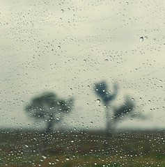 Some days are just rainy ( expressing emotions ) Tags: rain moody abstract abstracto lluvia vidrio window ventana road ruta