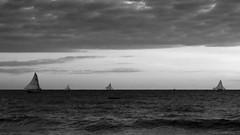 Jangadas ao mar, em preto e branco (Andr Felipe Carvalho) Tags: vento peroba icapu cear jangada pesca pescador nikon d7200 18300 alvorada sol nascente goldenhour