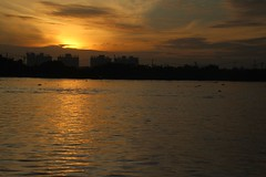 IMG_4796a - Sunrise, Saigon, Vietnam (Wayne W G) Tags: saigon hochiminhcity tphcm vietnam asia southeastasia cities city mekong mecong river rivers sunrise sunrises orange yellow sky tamron16300mmf3563diiivcpzdb016