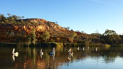 27th September 2016 (ABC News SA Weather Photos) Tags: adelaide south australia abc news weather