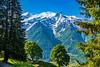 DSC_9522 (Costi Jacky) Tags: france naturereserve parcdemerlet