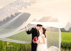 nh Ci p Trng An (Le Manh Studio / Photographer) Tags: ao cuoi le manh studio o ci l mnh bridal wedding weddingdress designer anhcuoidep aocuoininhbinh aocuoilemanh fashion anh x tin vy ui c di trng an tam ip cc hoa bng lng tm phim trng lemanh photographer photography cng vin vn nhn ng st ga ninh bnh nh p ninhbinh mc chu sn la gic mch i ch bokeh bch ng hong hn h yn thng d hevenlove vn long cc phng m