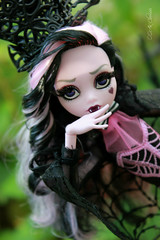 IMG_9867 (Cleo6666) Tags: draculaura collector draculaurasweet1600collectordoll monster high monsterhigh mattel deluxe deluxeedition