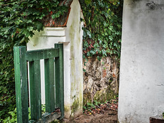 Enter To My World (Roman Styx) Tags: door old homestead gate wicket bindweed misterious