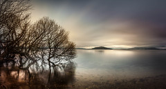 Lake Rotorua from Hamurana (eos1969) Tags: lake still water loch morning sunrise sunrays reflection silky smooth long tree longexposure nd panorama pano nz newzealand bayofplenty moving cloudy winter light hills mountains country tourism tourist lightroom six canon 5d dslr neutraldensity 10stop flickrtravelaward scenicsnotjustlandscapes remote isolated cold calm
