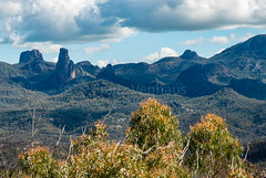 160924_Warrumbungles_5653.jpg (FranzVenhaus) Tags: trees creek countrybush plants cliffs australia mountains warrumbungles nsw water newsouthwales wilderness rocks aus