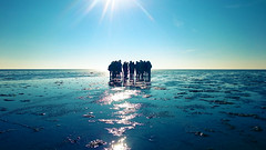 Mudflat hike (Nils van Rooijen) Tags: wadden waddenzee waddensea waddenvereniging mud flats plain netherlands sea water sky blue group excursion