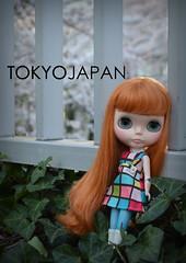 from hanami pics
