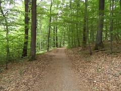SAM_0130 (krixlibux) Tags: rotenberg fellbach