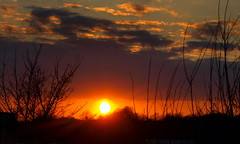 Sunset at Preston (Tony Worrall Foto) Tags: city uk sunset england sky sun weather clouds golden glow shine northwest horizon seasonal north lancashire shade preston sunlit setting settingsun prestonian prestonsunset 2013tonyworrall prestonscenicsceneryscenenicecolourspreston coloursbeautycalmpeacefulquiet