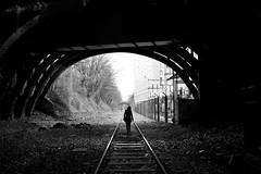 Paris, petite ceinture (flallier) Tags: paris pc 15e xv pont tunnel railroad chemindefer bnw noiretblanc blackandwhite voieferrée railway rails petiteceinture 75015 silhouette immeubles buildings