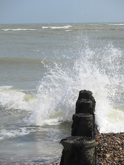 (purseypig) Tags: sea seaweed beach waves westsussex pebbles splash selsey breakwater groins eastbeach