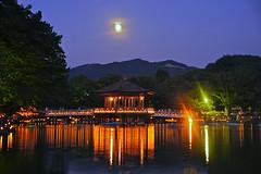 Nara Tokae and the Ukimido Pavilion (Manish Prabhune) Tags: japan illumination  nara    ukimido  ukimidou
