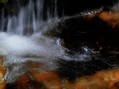 waterfalling (eserehtM) Tags: water flow waterfall falling tasmania flowing cradlemountain craterfalls