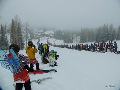 flutter on down (stevencook) Tags: ski skiing grand 420 skiresort wyoming grandtarghee 2013 stevencook scook stevencookrealtycom