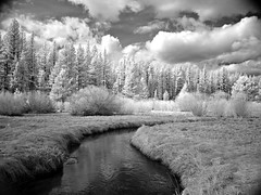 Trout Creek, South Lake Tahoe CA (KeithAlanK) Tags: ir tahoe f828