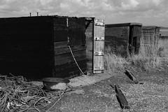 Square Huts - Explored (EJ Images) Tags: uk england slr monochrome buildings coast suffolk nikon nef huts explore coastal dslr beachhuts dunwich eastanglia nikonslr d90 flickrexplore nikondslr explored 2013 suffolkcoast nikond90 18105mmlens ejimages dsc239901c