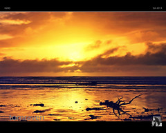 Golden (tomraven) Tags: sunset newzealand sun storm beach clouds golden glow deep driftwood dreamy barren refections drift goldenmist otakibeach tomraven aravenimage q32010 rememberthatmomentlevel1 rememberthatmomentlevel2 q22013