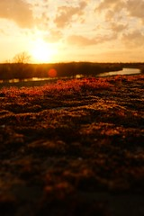 Red moss II (generalstussner) Tags: light sunset red sky orange sun beautiful clouds landscape moss fuji ruhr ruhrgebiet sunray littleworld x100