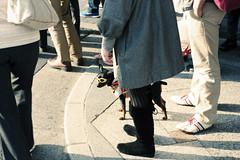 sunny afternoon (elnuego) Tags: japan 50mm nikon kyoto kodak  nippon kansai nikonf portra nihon ftn portra160 koku photomic  nihonkoku nipponkoku