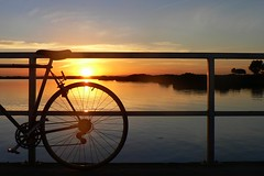 The days are getting shorter (The Pocket Rocket) Tags: sunset bike australia victoria mangroves oceangrove barwonriver