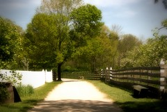 Happy Fence Friday (LaLa83) Tags: ohio white tree history fence spring farm sony country may lane alpha sunnyday a230 pickawaycounty 2013 columbusmetroparks slaterunhistoricalfarm fencefriday happyfencefriday
