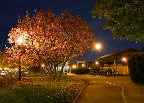 Spring Evening - Glen Ellyn Train Station