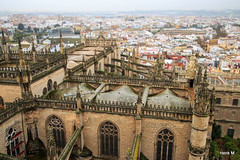Seen from the Cathedral: Sevilla (Hengelo Henk) Tags: 6 sevilla andalucia dag giralda spanje