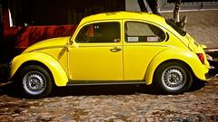 Bocho Amarillo (Yellow Bug) (Waywuwei) Tags: mexico jalisco puertovallarta mex aspectratio916 lenszuiko1454mmf2835 cameraolympuse5